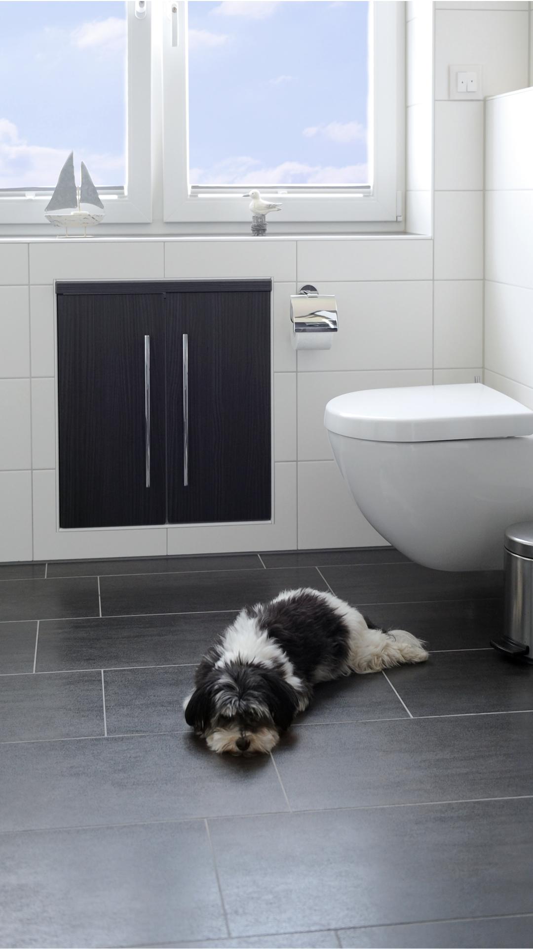 Entpsannter Hund im Bad