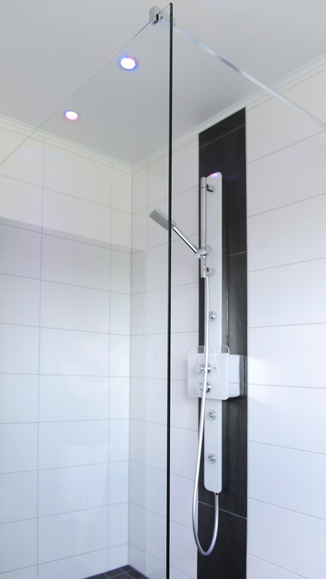 große Dusche mit Duschpaneel